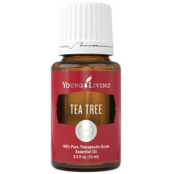 Use Tea Tree to help alleviate symptoms of and assist with: *Acne Skin Problems *Bug Bites *Pet Fleas *Itchy Skin *Lice Prevention *Toenail Fungus *Mold *Stale Laundry